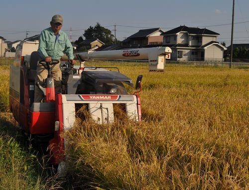 稲を刈り取る中島義雄さん=16日 愛西市