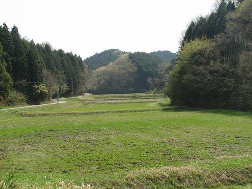 山林の間に水田と耕地があり、サシバやミゾゴイの生息地になっているテストコース予定地。