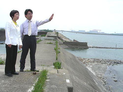 視察する(左から)八田ひろ子、斎藤ひろむの各氏=22日、豊橋市・六条潟